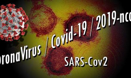 Actus / Informations / Analyses / Suivi de crise CoronaVirus / Covid-19 / 2019-ncoV – Mise à jour le 24/09/2020 | 18:00