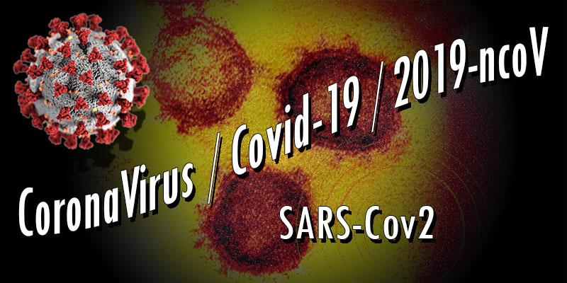 Actus / Informations / Analyses / Suivi de crise CoronaVirus / Covid-19 / 2019-ncoV – Mise à jour le 03/04/2021 | 11:00